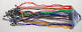 Sunglass Cords Coloured - (24 Cords Per Card)