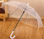 "Accosca Auto Open Umbrella 23"" - Transparent"